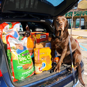 Dog Moms Unite Chow Wagon Donation