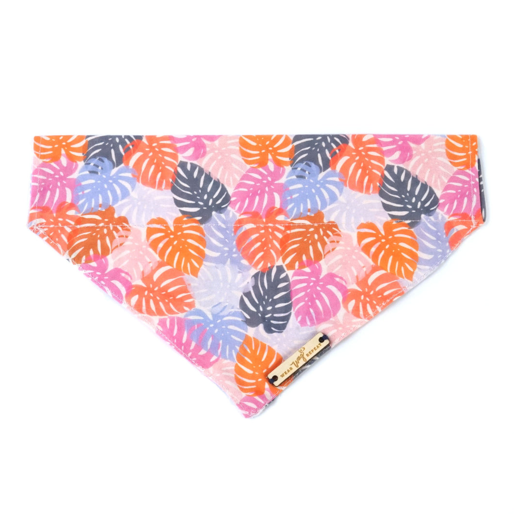 Pink Monstera Leaf print dog bandana over the collar