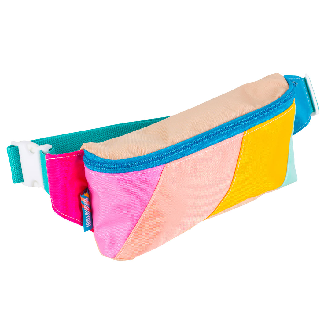 Stylish dog walking fanny pack