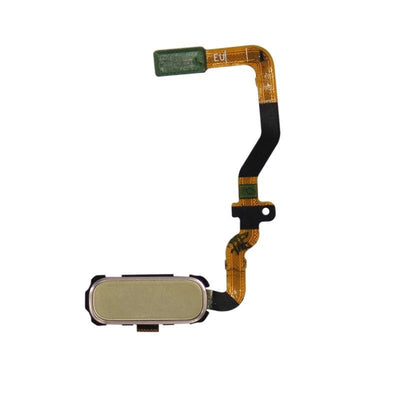 Galaxy S7 Home Button with Flex Cable (Gold)