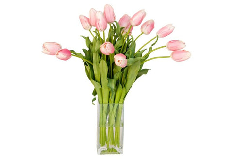 Pink Tulips in Glass Vase #10015