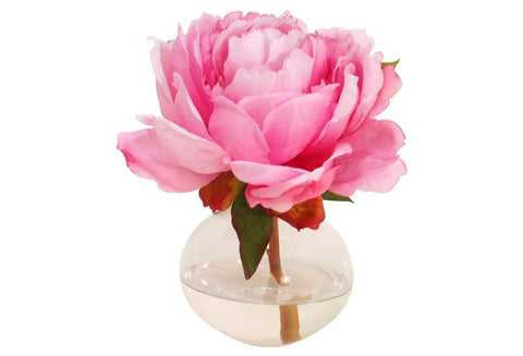 Pink Peony in Bubble Vase #1085