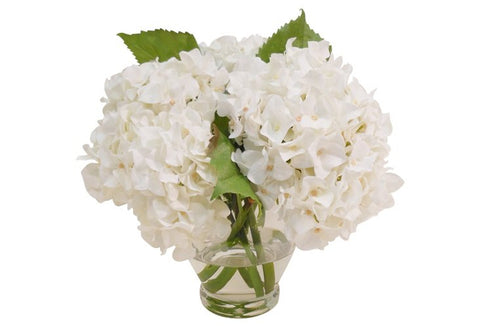 White Hydrangeas in Vase #1207