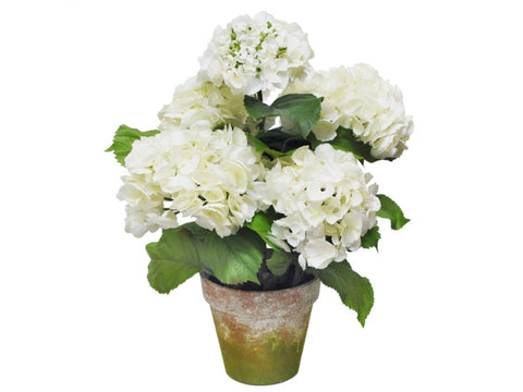 MEDIUM POTTED HYDRANGEA WHITE #1P4065.WH