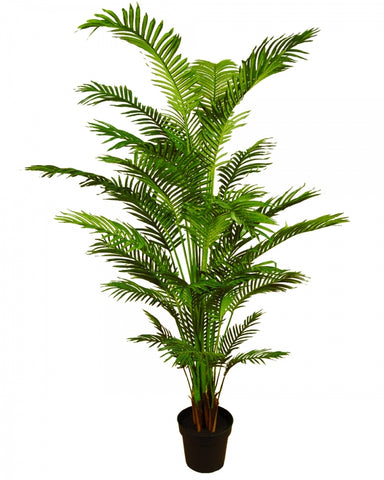 Real Touch Areca Palm #120597P00