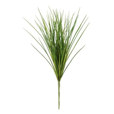 Onion Grass Bush #13038800
