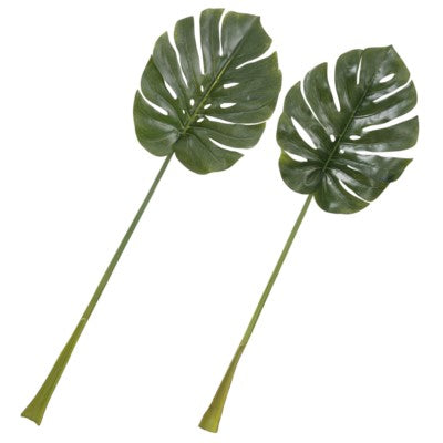 Set of 2 Splitleaf Philo Stems #13040000