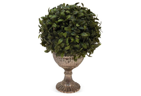 Boxwood Ball in Goblet #5018
