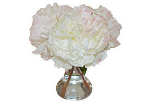 Cream Peonies in Vase #51021