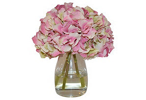 Hydrangeas in Glass Vase #51022