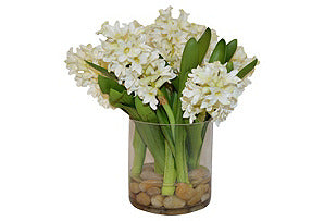 White Hyacinth w/rocks in cylinder #51023