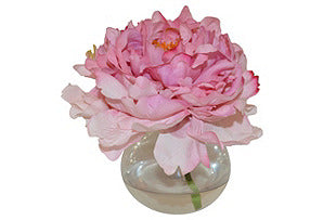 Peony in a Bubble #51056