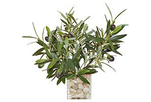 Olive Branches in Cube Vase #51068