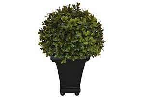 Boxwood Ball on Resin Pot #51075