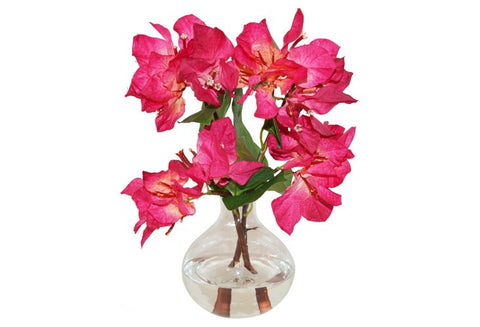 Bougainvillea in Bubble Vase #51077