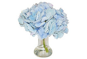 Hydrangea in Tropical Vase #51089