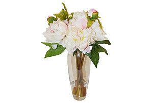 Peonies in Glass Vase #51112