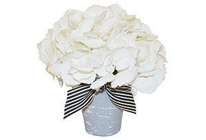Hydrangea in Grey Washed Pot #51123