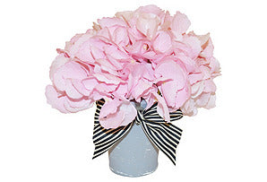 Hydrangea in Grey Washed Pot #51124