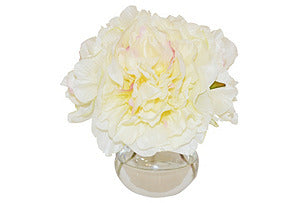 Champagne Peonies in Vase #51151