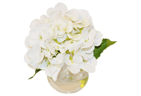 White Hydrangea in Bubble Vase #51168