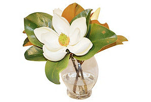 Magnolia in Glass Vase #51183