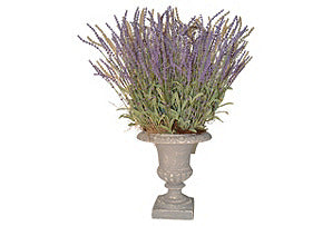 Lavender in Grey Washed Urn #51238
