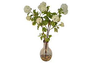 Viburnum in Glass Vase #51239