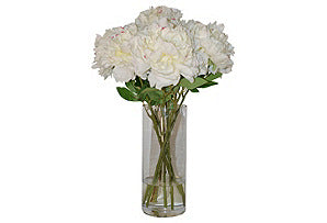 Peonies in Tall Vase #51289