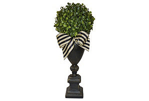 Boxwood Ball on Black Urn #51365
