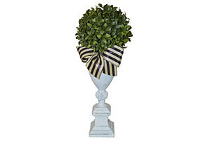 Boxwood on White Urn #51380