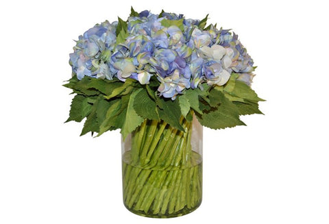 Blue Hydrangeas with Stems in Cylinder Vase #51473