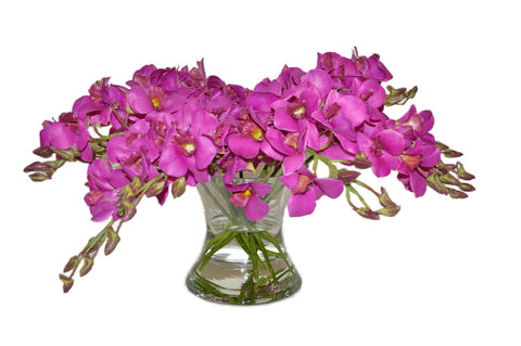 Magenta Orchids in Large Flared Vase #51554