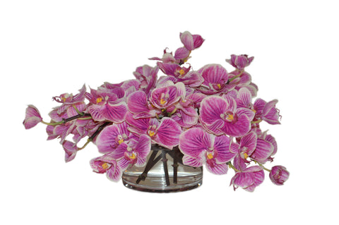 Pink Orchids in Short Cylinder Vase #51828