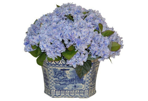 Blue Hydrangeas in a Blue and White Container #51917