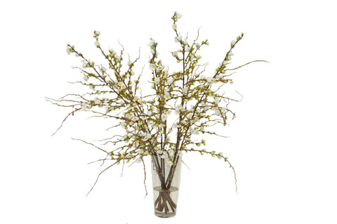 White Cherry Blossoms in a Cylinder Vase #52061