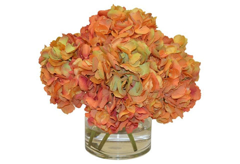 Burnt Orange Hydrangeas in a Cylinder Vase #52091