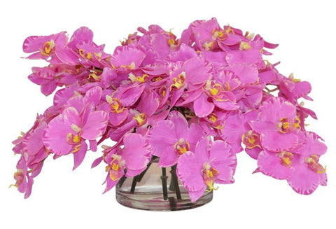 Pink Orchids in a Short Cylinder Vase #52180