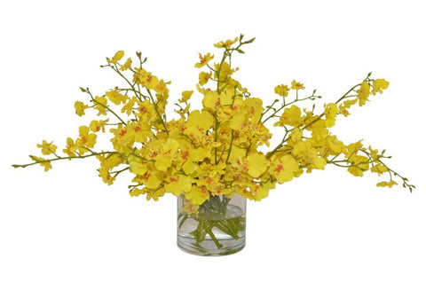 Yellow Orchids in a Small Cylinder Vase #52191