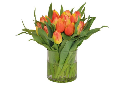 Yellow and Red Tulips in a Cylinder Vase #52192