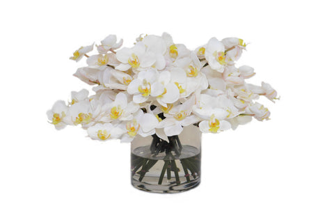 White Orchids in a Cylinder Vase #52229