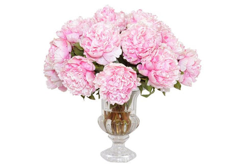 Pink Peonies in a Footed Glass Urn #52244