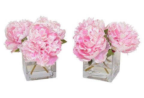 Set of 2 Pink Peonies in a Cube Vase #52350