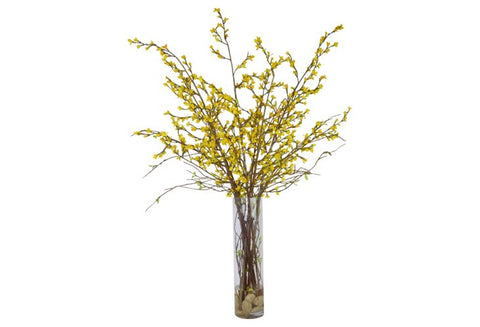 Yellow Forsythia in a Tall Cylinder Glass Vase #52439