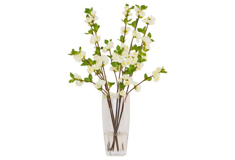 White Quince in Glass Vase #8070