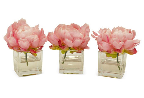 Set of 3 Pink Peonies in Cubes #8090