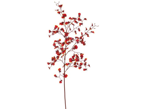 Red Dancing Oncidium Orchid Stem #195315BU00