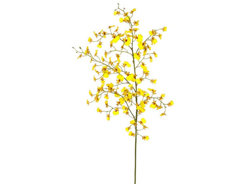 Yellow Dancing Oncidium Orchid Stem #195315YL00
