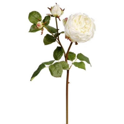 White English Bianca Rose Stem #195458CWH00