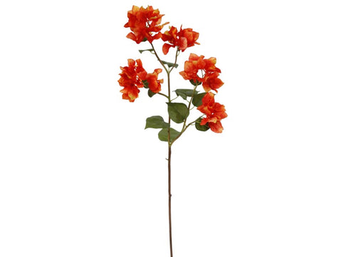 Orange Bougainvillea Spray #19560200